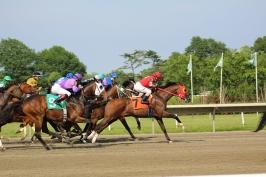 060918_HorseTrack8